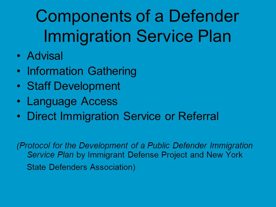 Components of a Defender Immigration Service Plan