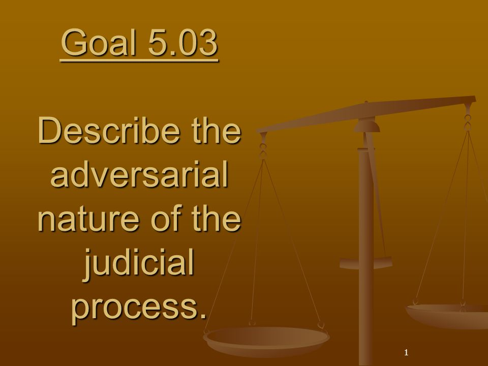 Goal 5.03 Describe the adversarial nature of the judicial process.