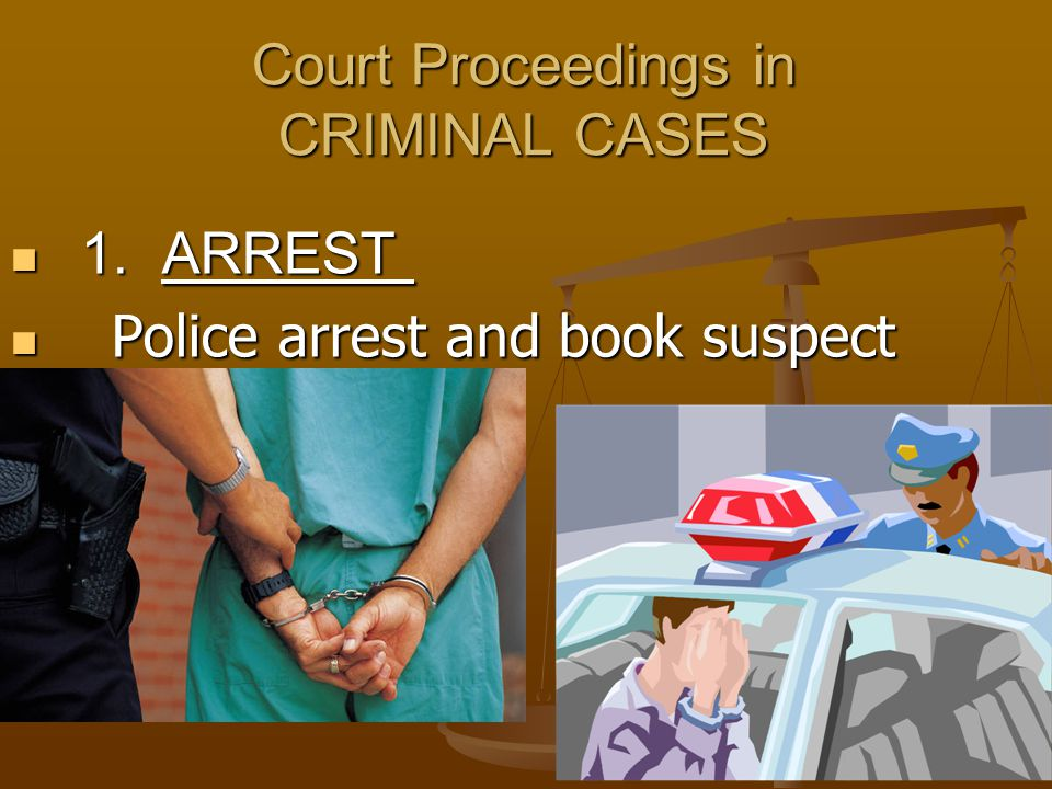 Court Proceedings in CRIMINAL CASES