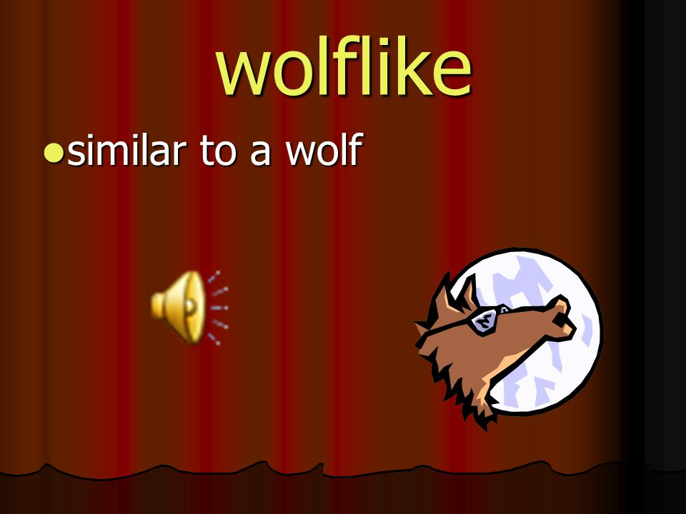 wolflike similar to a wolf