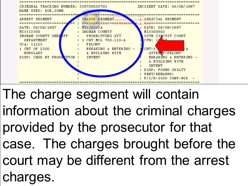 The charge segment will contain information about the criminal charges provided by the prosecutor for that case.