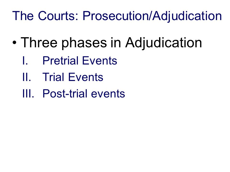 The Courts: Prosecution/Adjudication