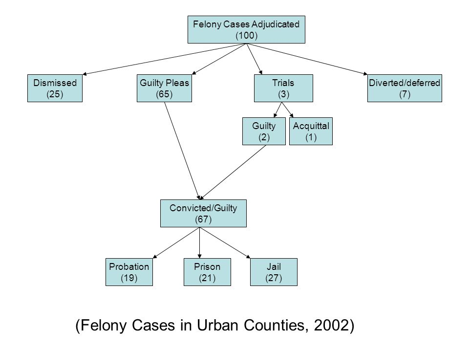 Felony Cases Adjudicated