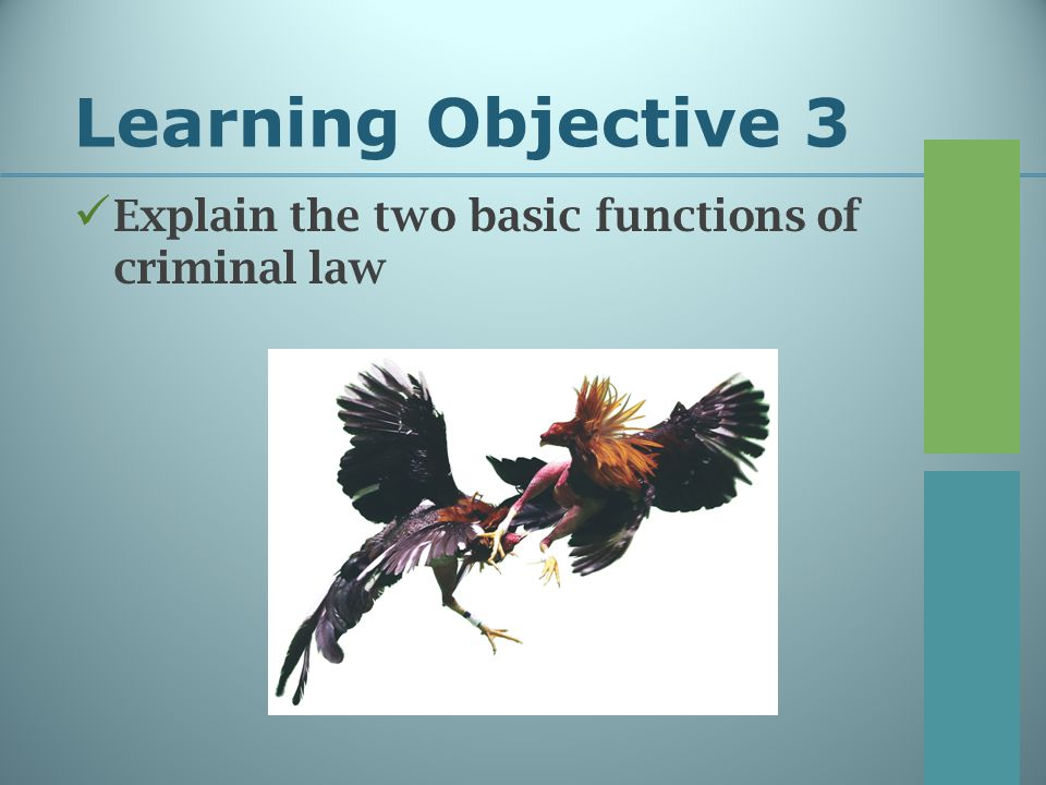 Learning Objective 3 Explain the two basic functions of criminal law