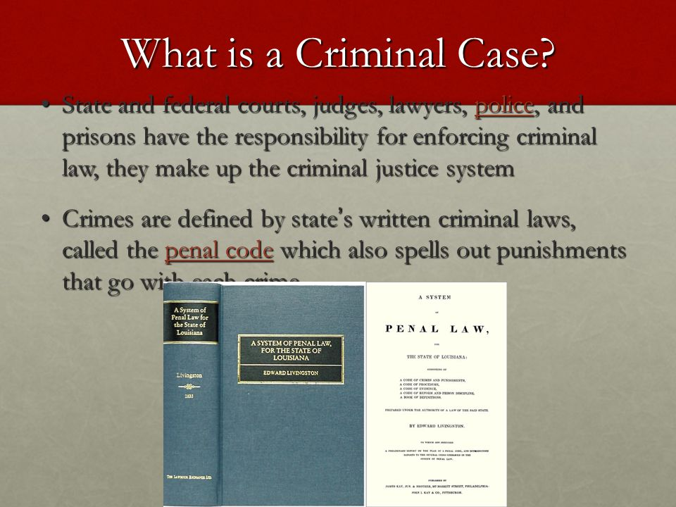 What is a Criminal Case