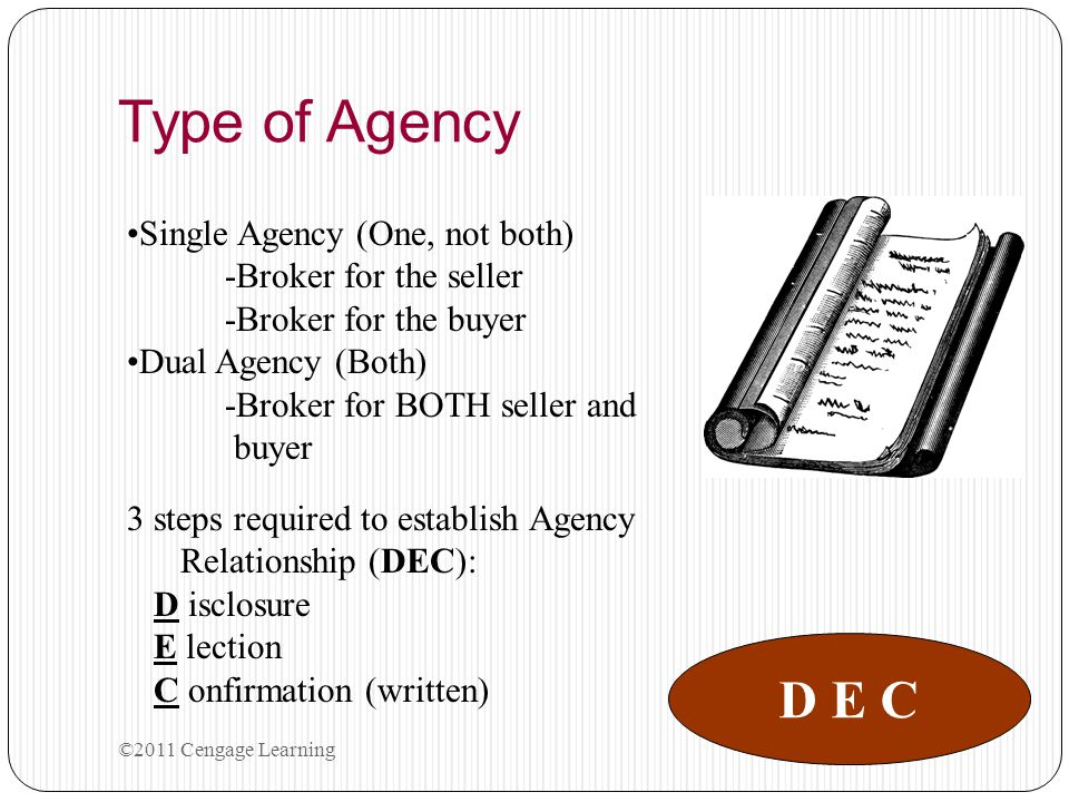 Type of Agency D E C Single Agency (One, not both)