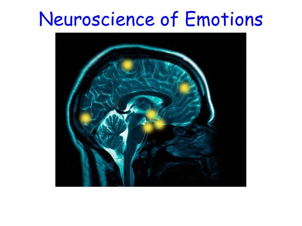 Neuroscience of Emotions