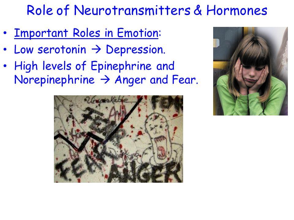 Role of Neurotransmitters & Hormones