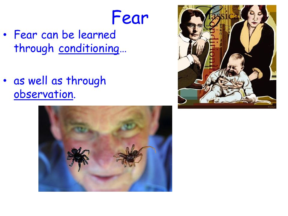 Fear Fear can be learned through conditioning…