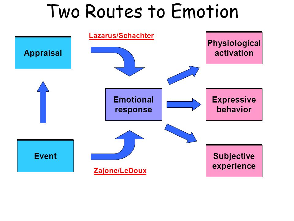 Two Routes to Emotion Appraisal Event Emotional response Physiological