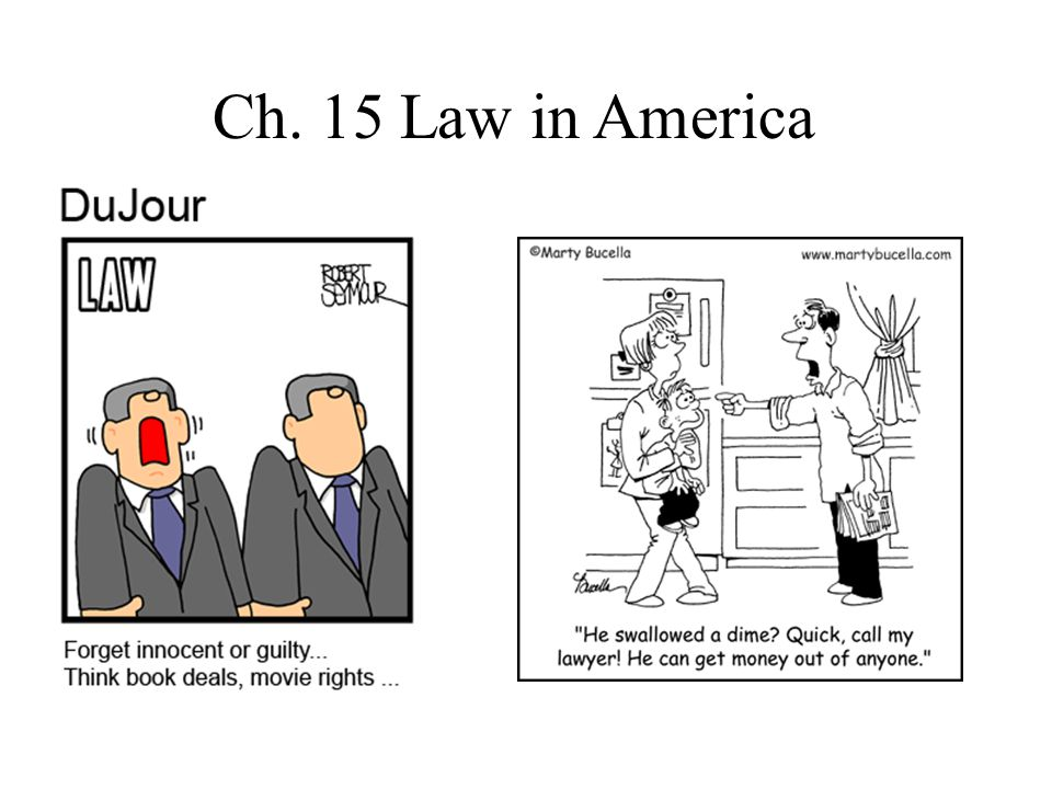 Ch. 15 Law in America