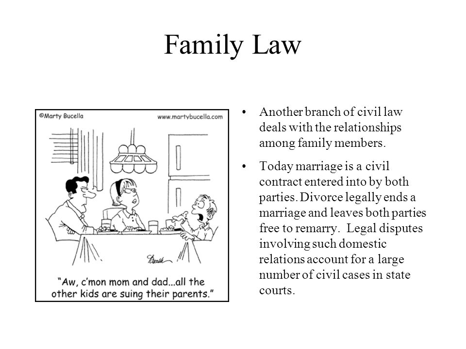 Family Law Another branch of civil law deals with the relationships among family members.
