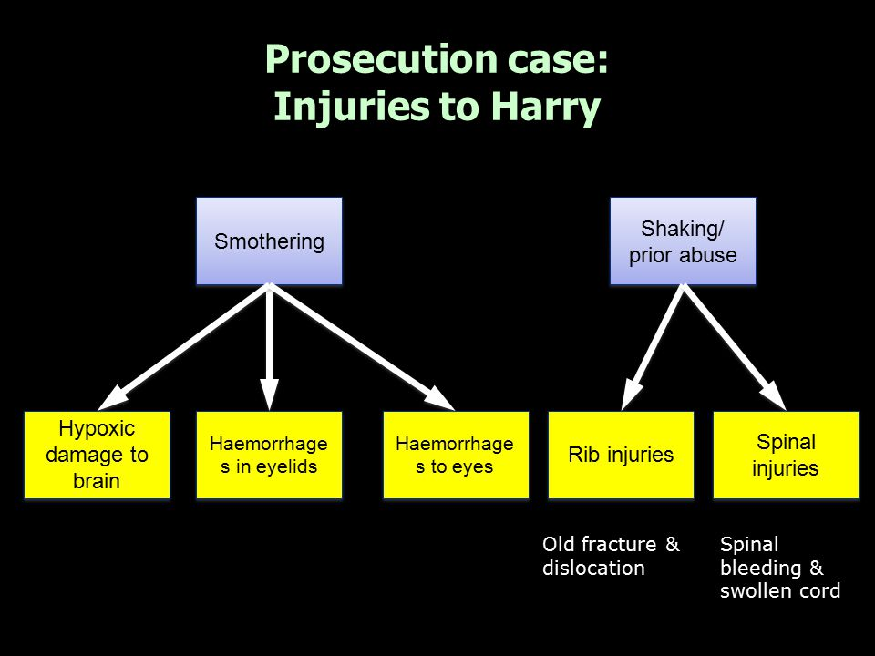Prosecution case: Injuries to Harry