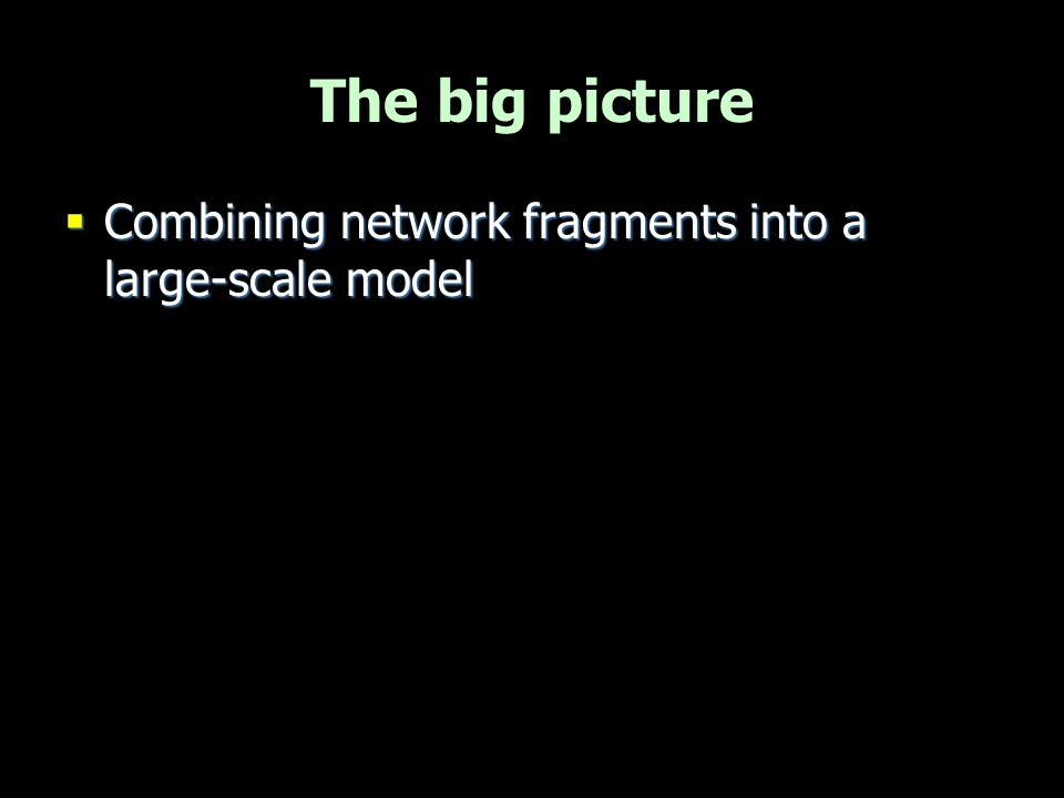 The big picture Combining network fragments into a large-scale model