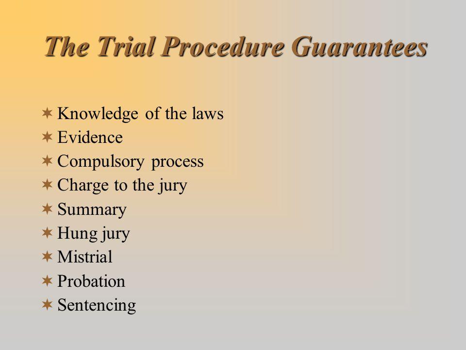 The Trial Procedure Guarantees