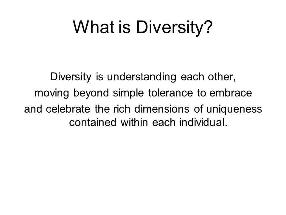 What is Diversity Diversity is understanding each other,