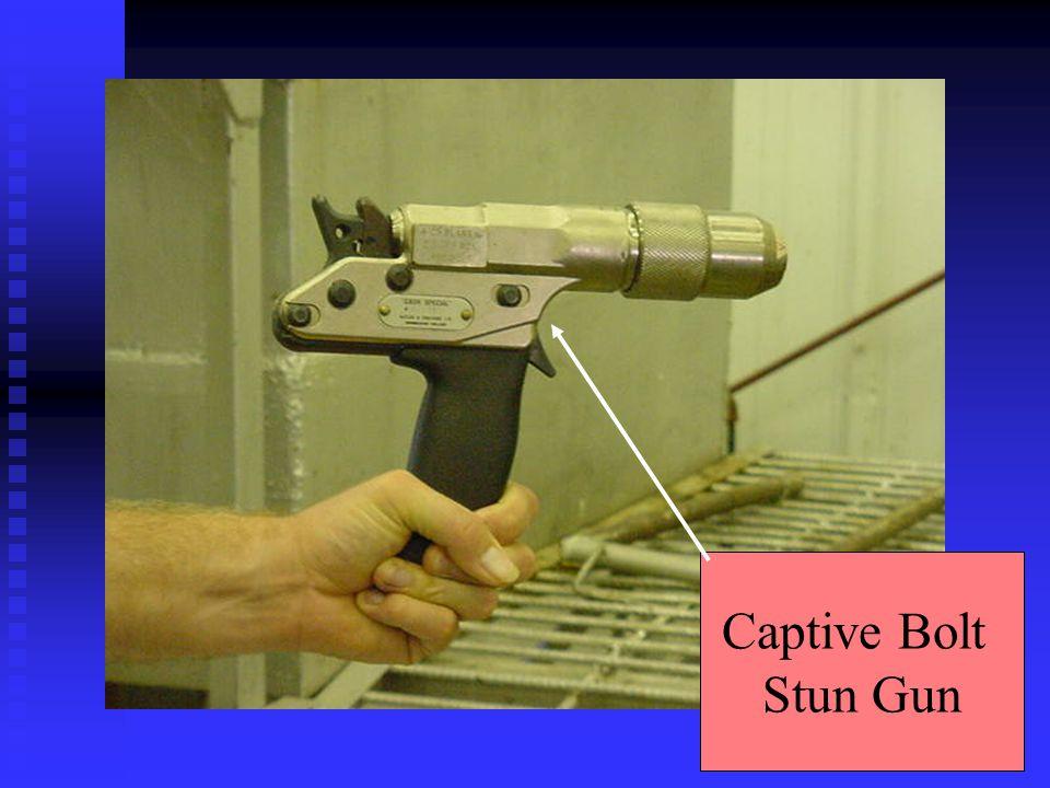Captive Bolt Stun Gun