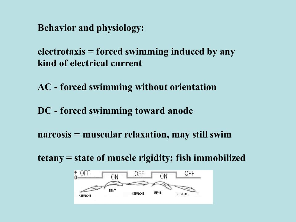 Behavior and physiology: