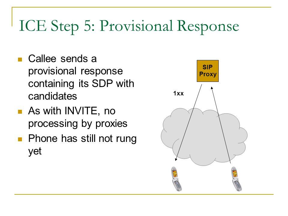 ICE Step 5: Provisional Response