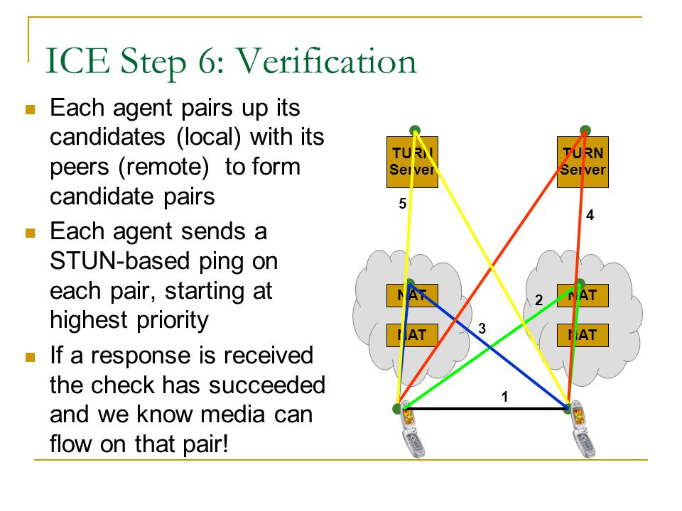 ICE Step 6: Verification