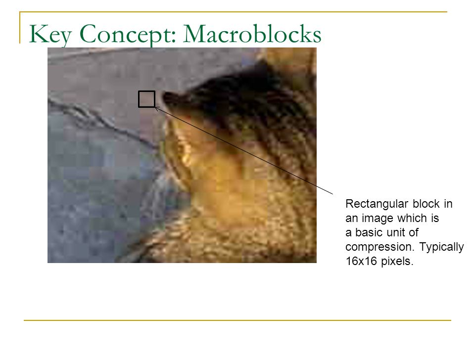 Key Concept: Macroblocks