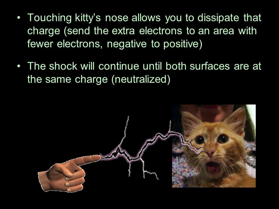 Touching kitty's nose allows you to dissipate that charge (send the extra electrons to an area with fewer electrons, negative to positive)