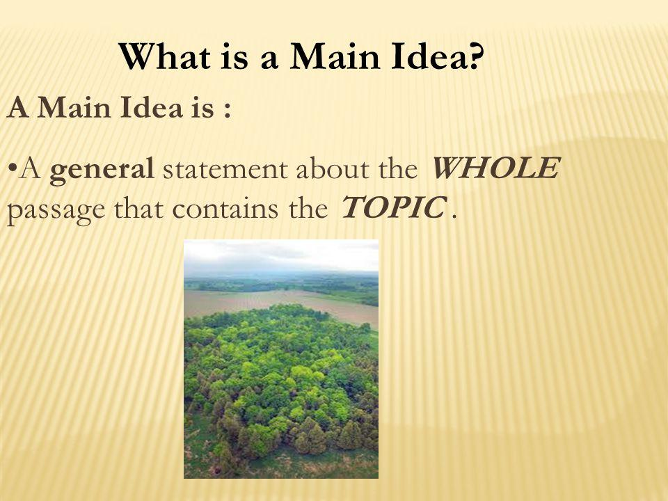 What is a Main Idea A Main Idea is :