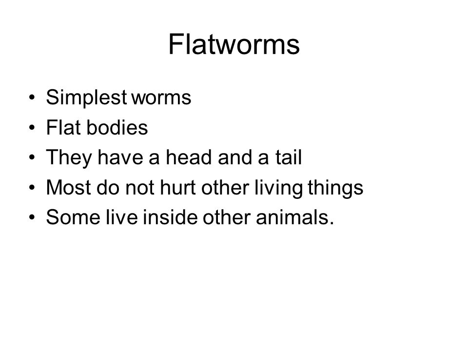 Flatworms Simplest worms Flat bodies They have a head and a tail