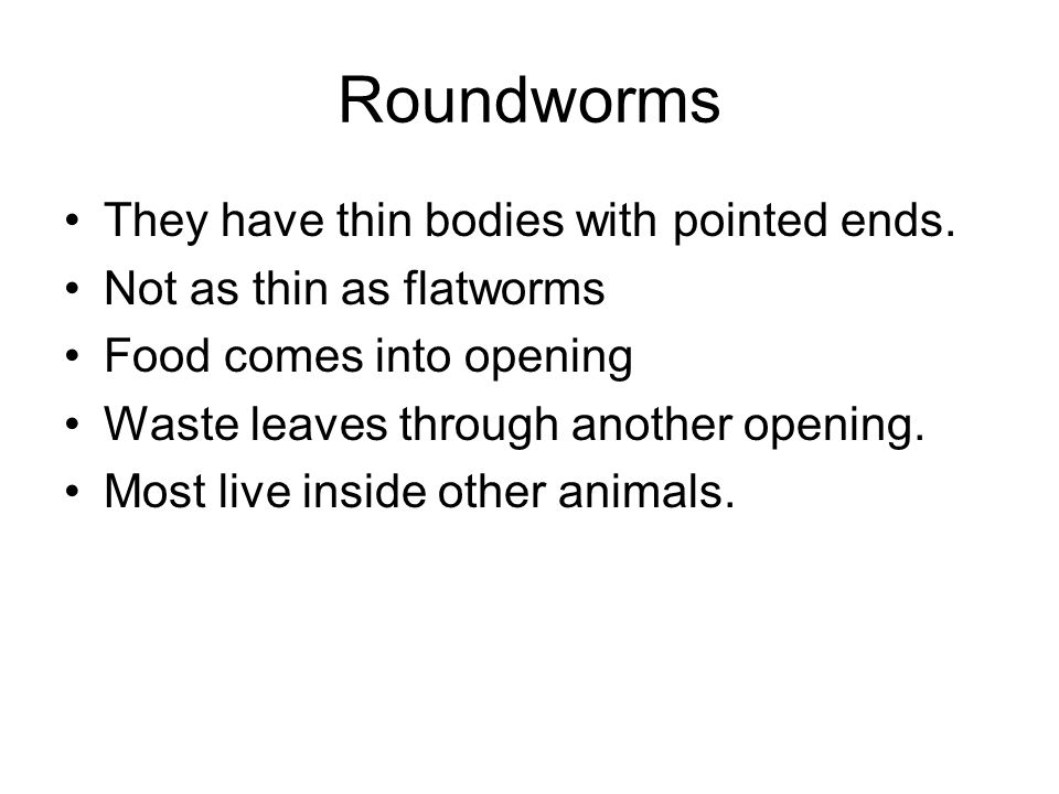 Roundworms They have thin bodies with pointed ends.
