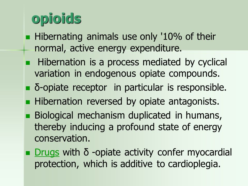 opioids Hibernating animals use only 10% of their normal, active energy expenditure.
