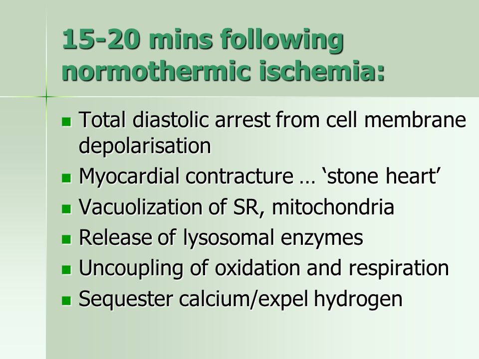 15-20 mins following normothermic ischemia: