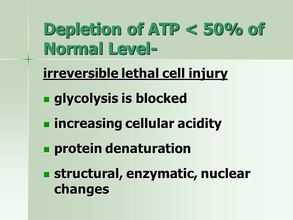 Depletion of ATP < 50% of Normal Level-
