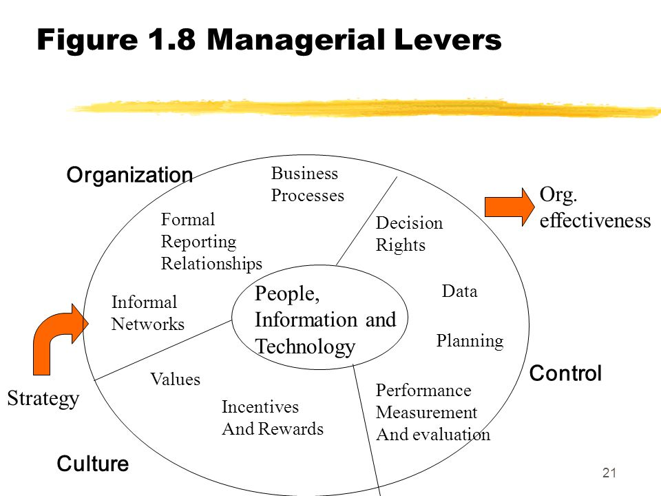 Figure 1.8 Managerial Levers