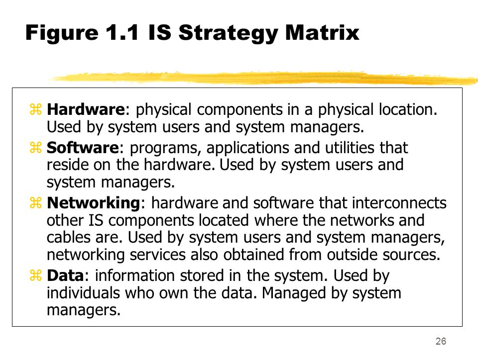 Figure 1.1 IS Strategy Matrix
