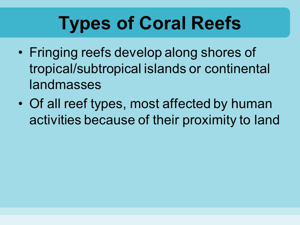Types of Coral Reefs Fringing reefs develop along shores of tropical/subtropical islands or continental landmasses.