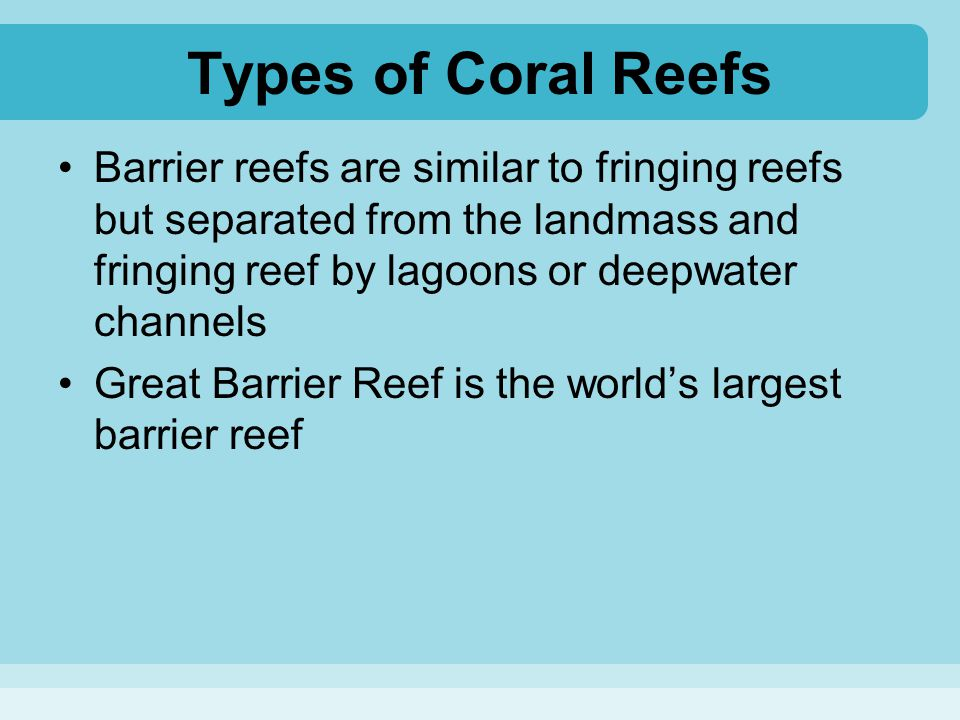 Types of Coral Reefs Barrier reefs are similar to fringing reefs but separated from the landmass and fringing reef by lagoons or deepwater channels.