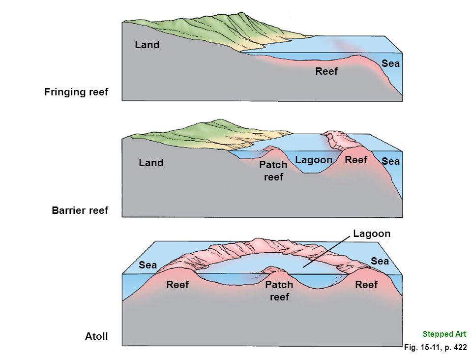 Land Sea Reef Fringing reef Land Lagoon Sea Reef Patch reef