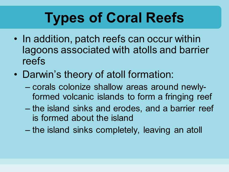 Types of Coral Reefs In addition, patch reefs can occur within lagoons associated with atolls and barrier reefs.