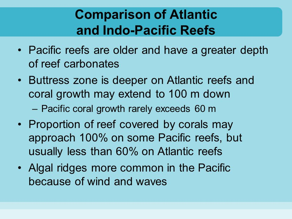 Comparison of Atlantic and Indo-Pacific Reefs
