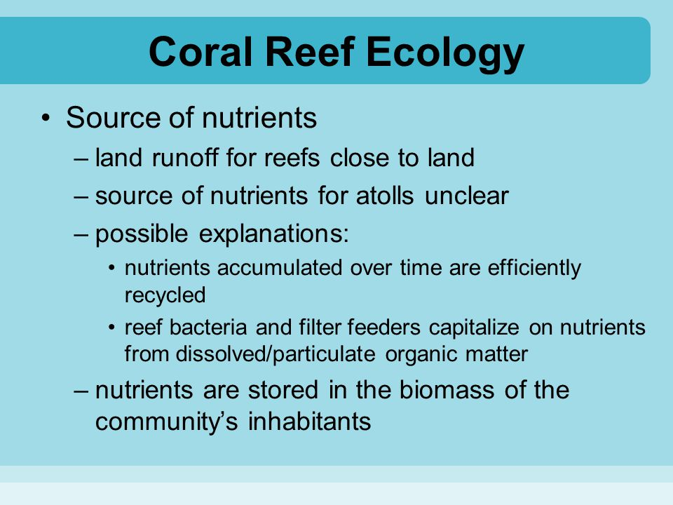 Coral Reef Ecology Source of nutrients
