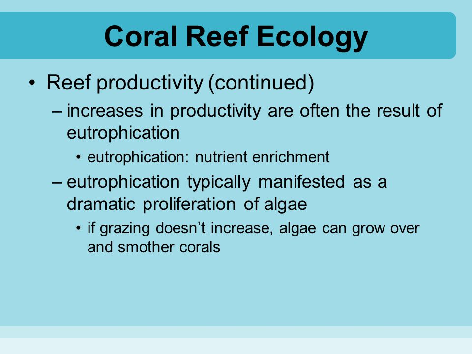 Coral Reef Ecology Reef productivity (continued)