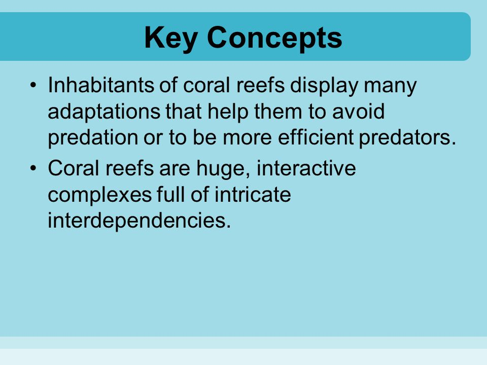 Key Concepts Inhabitants of coral reefs display many adaptations that help them to avoid predation or to be more efficient predators.