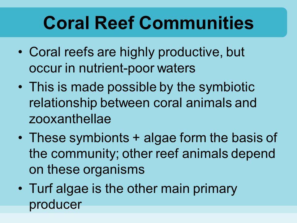Coral Reef Communities