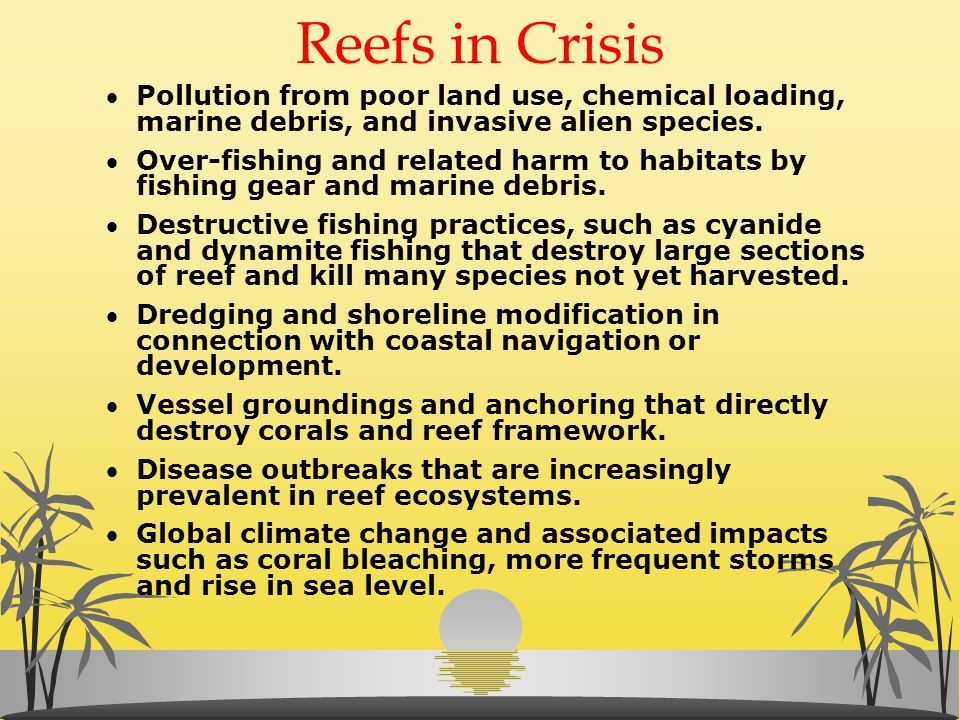 Reefs in Crisis Pollution from poor land use, chemical loading, marine debris, and invasive alien species.