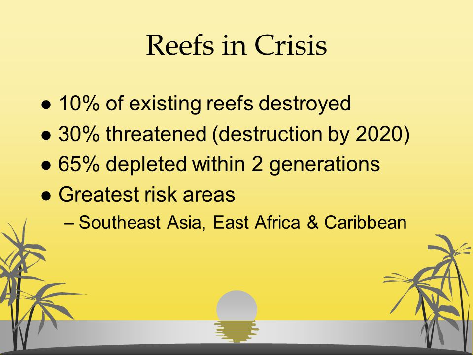 Reefs in Crisis 10% of existing reefs destroyed