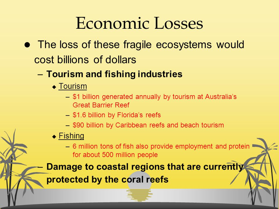 Economic Losses The loss of these fragile ecosystems would cost billions of dollars. Tourism and fishing industries.