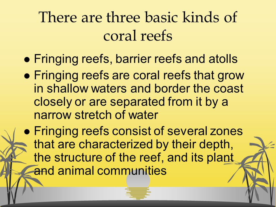 There are three basic kinds of coral reefs