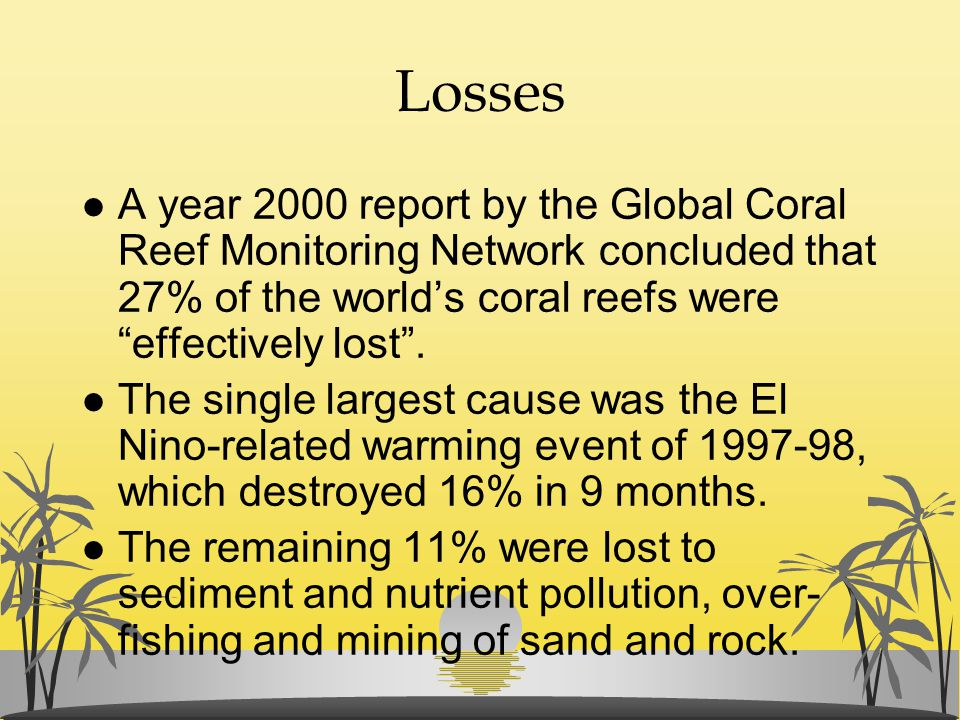 Losses A year 2000 report by the Global Coral Reef Monitoring Network concluded that 27% of the world's coral reefs were effectively lost .