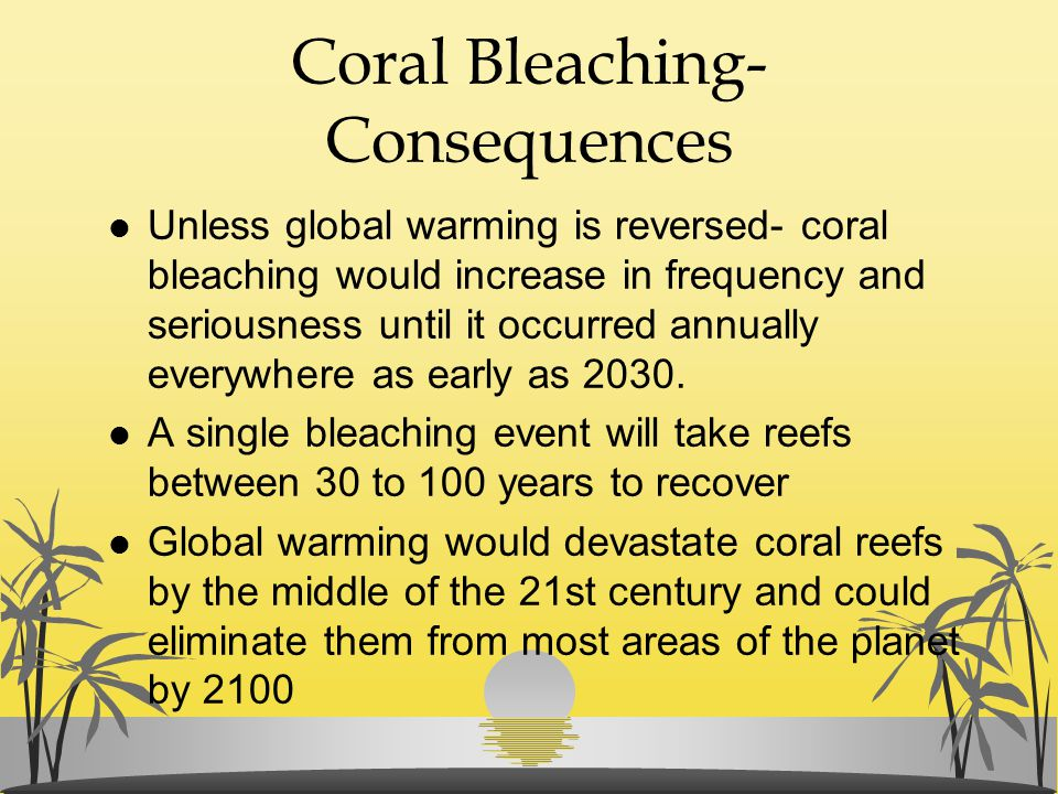 Coral Bleaching- Consequences