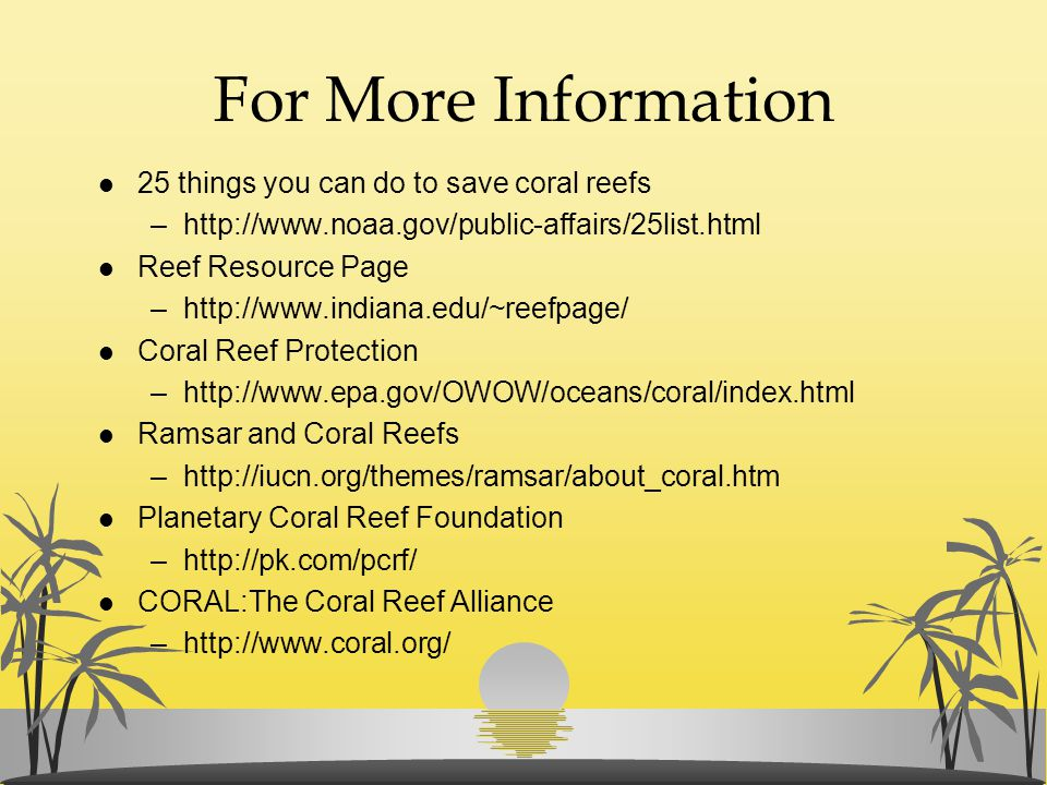 For More Information 25 things you can do to save coral reefs